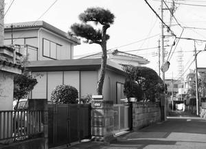 糸崎公朗『藤沢市P2160200』A4size