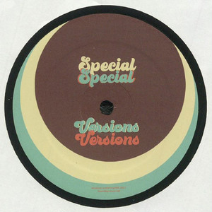 """【12""""】Theo Parrish / The Unit - Special Versions"""