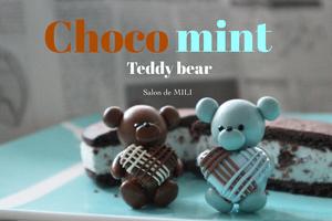復習レッスン取り入れ用チョコミントchocolate teddy bear