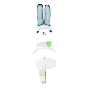 ピー朗(百年杉チップ入り人形)