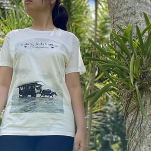 由布島オリジナルTシャツ(水牛車)