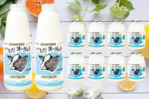 【ギフト】飲むヨーグルト「いちだヨーグルト」900ml×2本・150ml×8本(贈答・ギフトA-11)