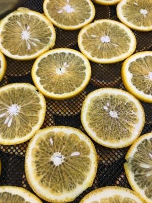 しっかりレモン 30g