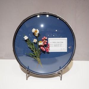 Bubble Glass Frame L PK