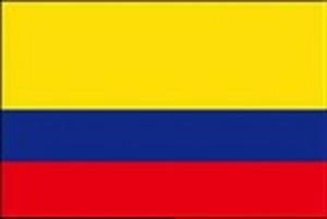 2020年 10月限定 コロンビア 天空のコーヒー 粉 100g