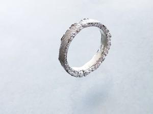 soil ring (S)(silver)