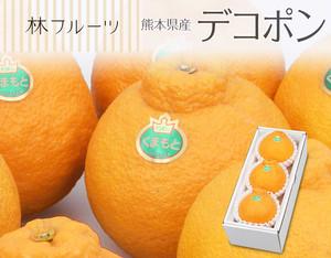 熊本県産 デコポン3玉(計約900g)〔送料無料、デコポン、不知火、柑橘、詰め合わせ、贈答用〕
