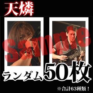 【チェキ・ランダム50枚】天燐