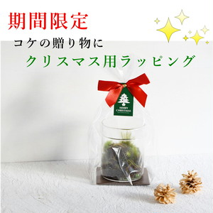 【クリスマス用】ギフトラッピング