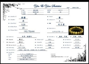 ※1ヶ月2名様まで【Yin&Yan Statistics(陰陽統計鑑定)】