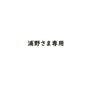 浦野さま専用