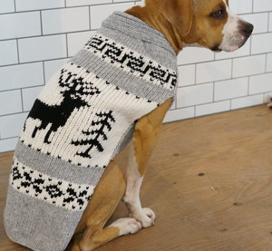 CHILLY DOG/Reindeer Shawl Dog Sweater