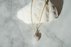 Tooth Shape Necklace ▶ 14kgf