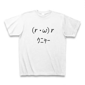 角運動量あたりの式の一部