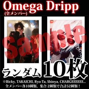 【チェキ・ランダム10枚】Omega Dripp(全メンバー)