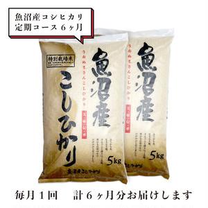 【定期コース】魚沼産コシヒカリ 10kg 6ヶ月