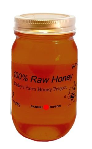 【限定品】山栗(やまくり)    国産天然(生)蜂蜜 内容300g
