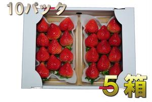 あまおう Gパック 5箱(Spring Price)