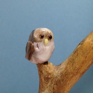 流木止まり木『フクロウ』