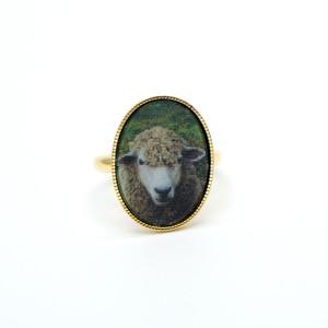 カワリング(羊&狼・楕円形・緑)
