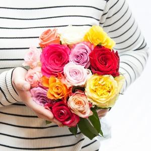 隔週届くAFRIKA ROSE 定期便 M【送料込み】