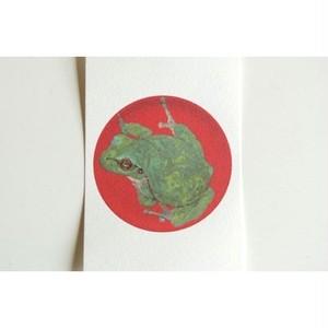 月蛙 ポストカード 『皿蛙』 10004