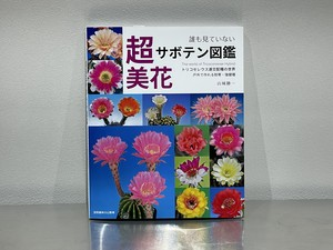 超美花サボテン図鑑 (トリコケレウス連交配種の世界)