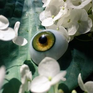 オリーブグリーンの義眼
