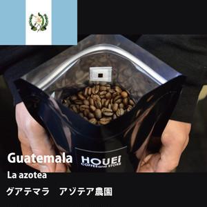 GUATEMALA アゾテア農園 SHB 200g