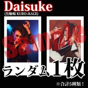 【チェキ・ランダム1枚】Daisuke(黒蜥蜴 KURO+KAGE)