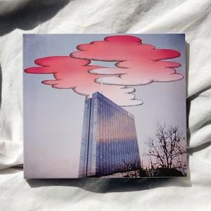 ステレオガール / Pink Fog