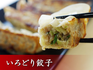 いろどり餃子(20個入り)
