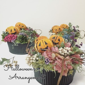 Halloween's arrangement (Blue ,  Pink , Green )