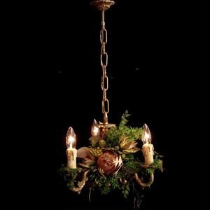 Banksia green  chandelier lamp france vintage