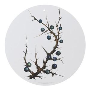 マルチボード 北欧デザイン 白樺 木製 Φ 35 KOUSTRUP & CO. - Blackthorn ブラックソーン