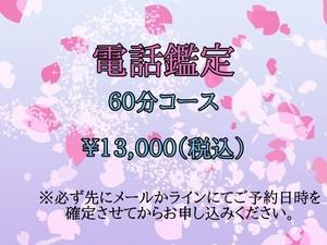 電話鑑定(60分コース)