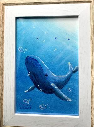 一点物の絵 no.182「クジラよ」