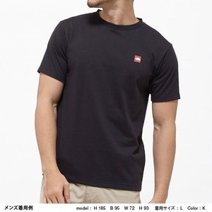 THE NORTH FACE ノースフェイス S/S SMALL BOX LOGO TEE