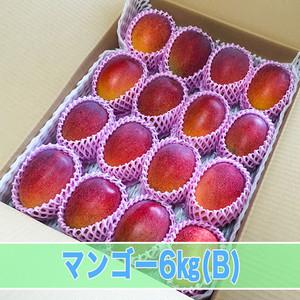 マンゴー(B) 6kg箱