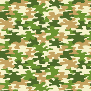 camouflage_003
