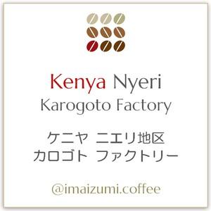 【送料込】ケニヤ ニエリ地区 カロゴトファクトリー - Kenya Nyeri Karogoto Factory - 300g(100g×3)