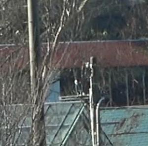 UFO video 12/27 2分