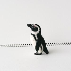 ケープペンギンマスコット(小)