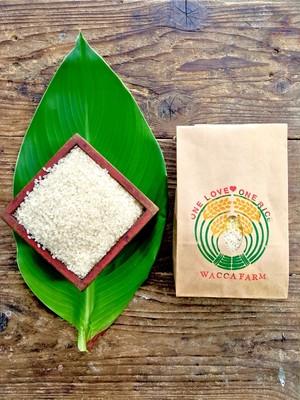自然栽培米2kg「ひのひかり・きぬむすめ」(玄米/5分/7分/白米)