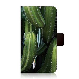 FLIPA-BOTANICAL GARDEN-Cereus Peruvianus-FC-BG05