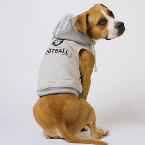 OAKLAND RAIDERS Hooded Sweatshirt【S~3XLサイズ】