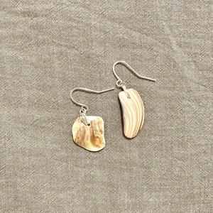 Brown shell pierce