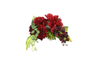 真紅-shinku-花帯(Noble Style :RED)