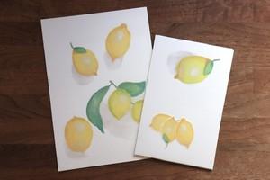 レモンのレターセット