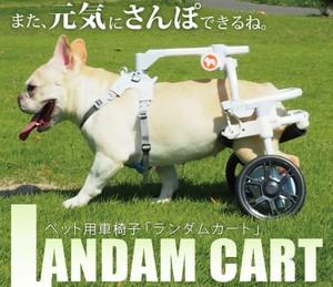世界初☆小回りのきく超軽量☆ペットの車椅子